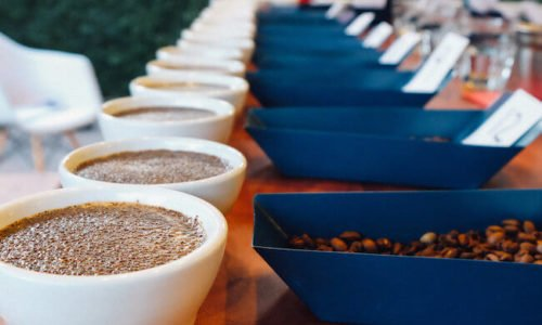 Becoming a Q Grader: The Ultimate Coffee Challenge
