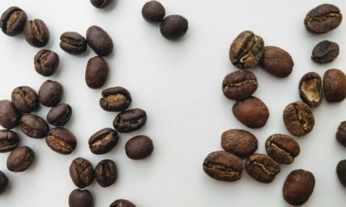 What is Peaberry Coffee. And Should You Try it?