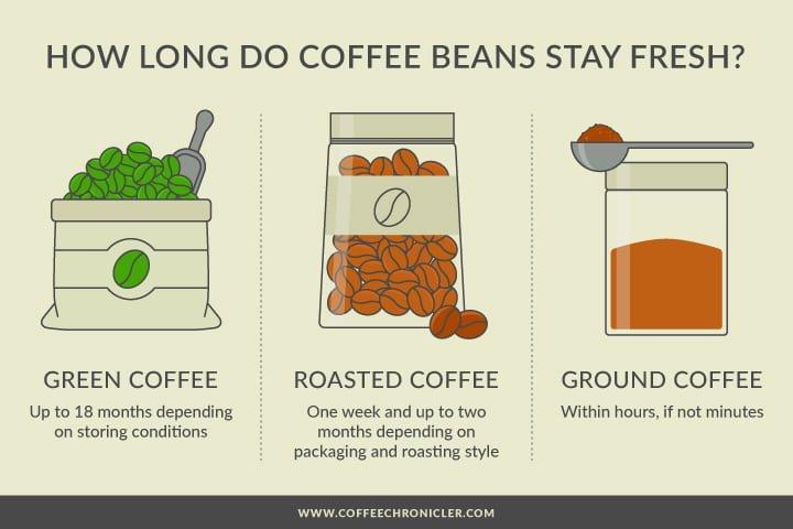 coffee freshness infographic
