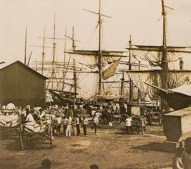 brazil coffee export at the harbour in santos